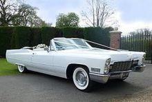 Cadillac011croppedscaled006